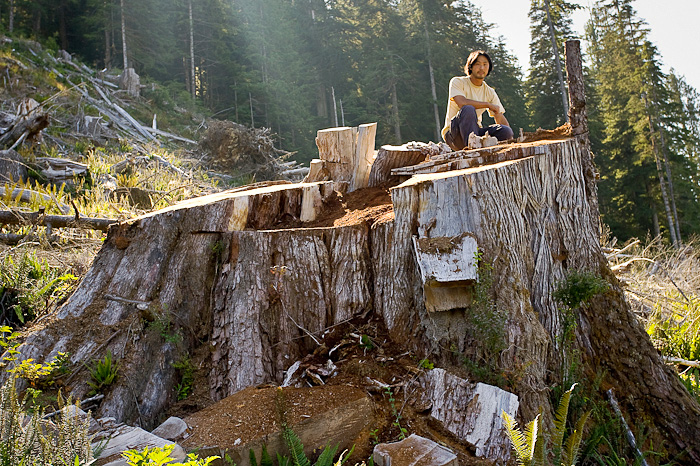 Walbran_Giant_Stump-7