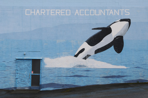 Chartered Accountants Port Alberni, BC 2011