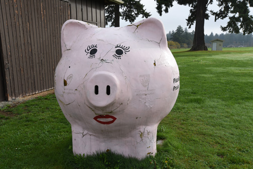 Pink Pig, Saanich, BC 2015  Don Denton photograph
