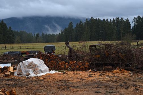 Firewood lot, Duncan, British Columbia 2017